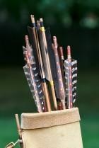 Arrows in quiver
